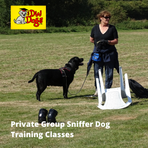 Private sniffer dog classes. Dionne Worth with Blake outside setting up a sniffer class
