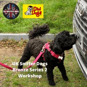 UK Sniffer Dogs Workshop black dog sniffing car grill