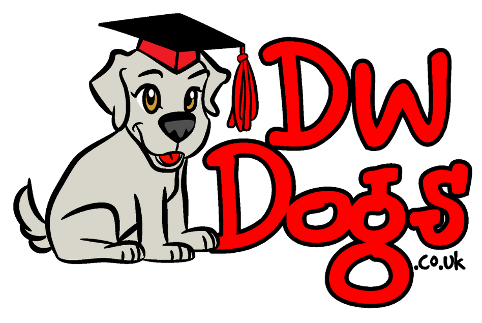 DW Dogs Behaviour Consultant East Sussex